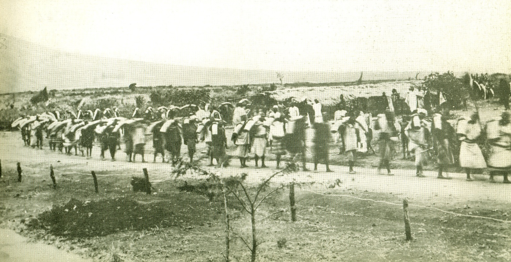 An ivory caravan at Machakos in 1895  in 1895 en route for the coast.